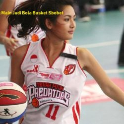 Sensasi Menang Main Judi Bola Basket Sbobet